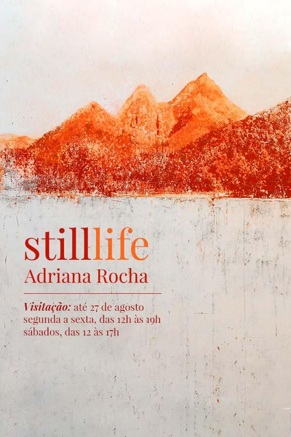 Still life e Habitar o limite, de Adriana Rocha